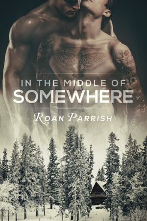 middle of somewhere roan parrish book audio review