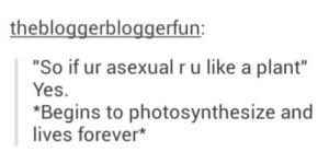tumblr-plants