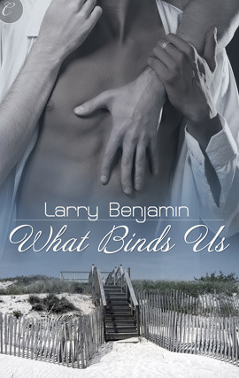 Larry Benjamin What Binds Us Gay Fiction AIDS