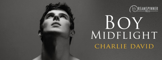 david-charlie-boy-midflight-banner