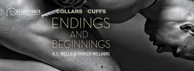 wells-williams-endings-beginnings-banner