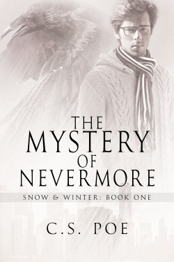 poe-mystery-nevermore