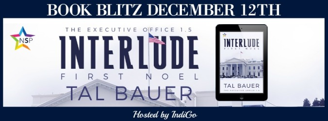 bauer-interlude-first-noel-banner