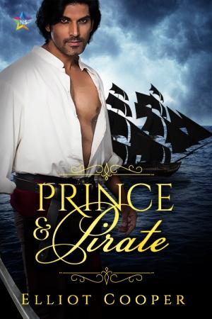 cooper-prince-pirate