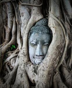 thailand-1950793_640